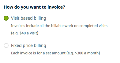 How do you want to invoice options