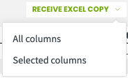 receive excel copy options for the columns of the report that is emailed to them