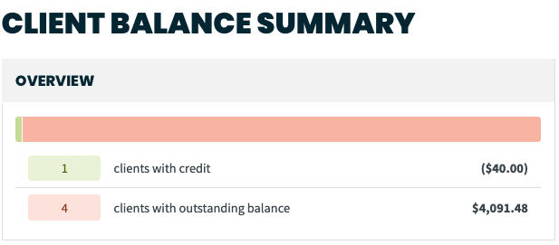 client balance summary overview showing clients with credit and clients with outstanding balance