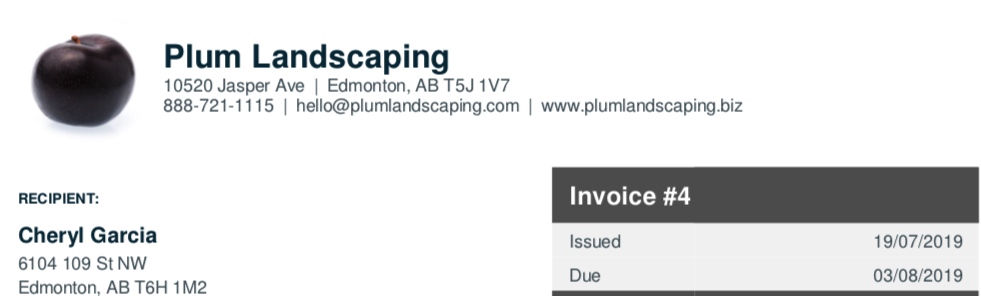 Invoice header showing logo, company name, and contact information