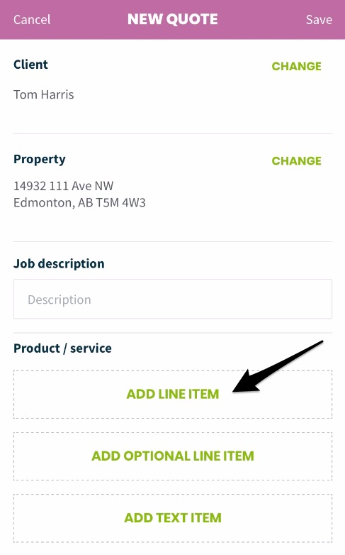 Line item options with an arrow pointing to the button to add a line item
